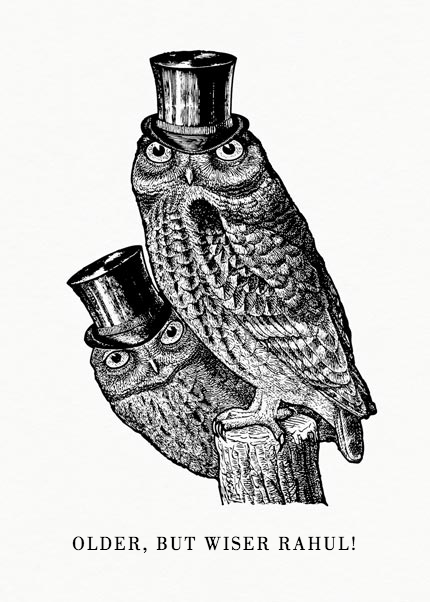 Sophisticated Owls