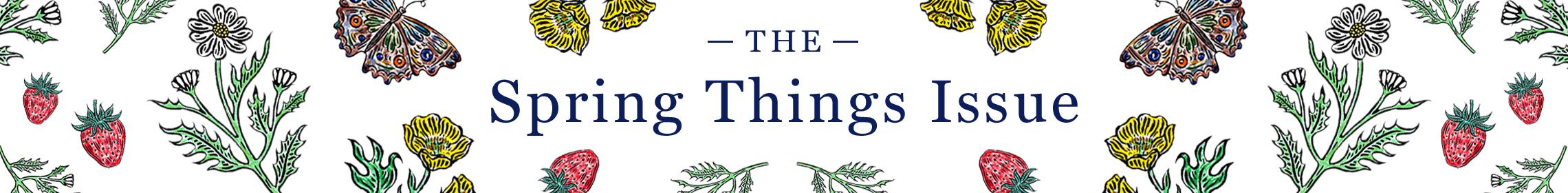 0319 thefold springthingsissueissuebanner desktop