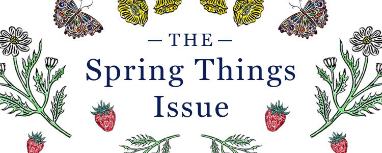 0319 thefold springthingsissueissuebanner mobile