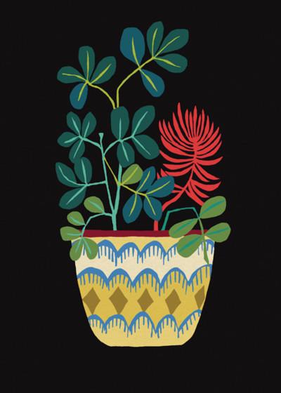 Money Plant | Personalised Birthday Card