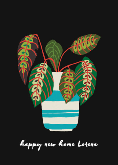 Striped Pot Plant   Personalised Congratulations Card