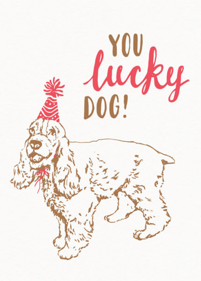 You Lucky Dog   Personalised Birthday Card