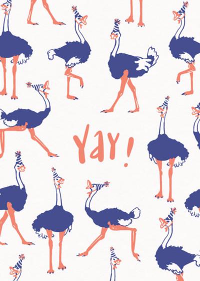 Birthday Ostrich   Personalised Birthday Card