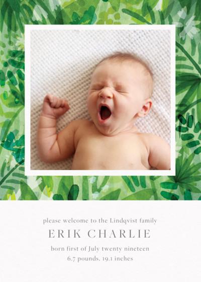 Jungle Foliage | Personalised Birth Announcement