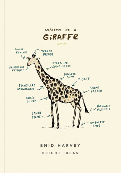 Anatomy Of A Giraffe | Personalised Lined Notebook