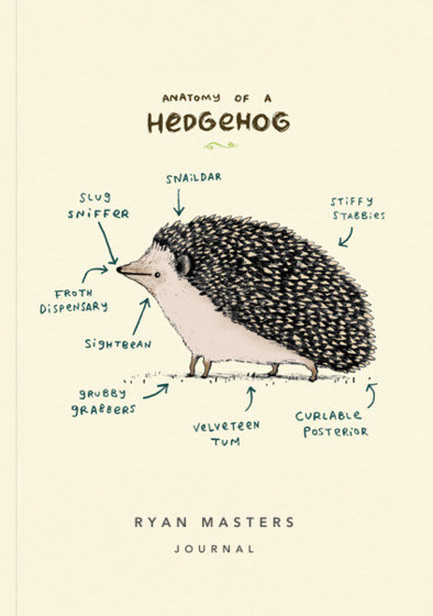 Anatomy Of A Hedgehog   Personalised Lined Notebook