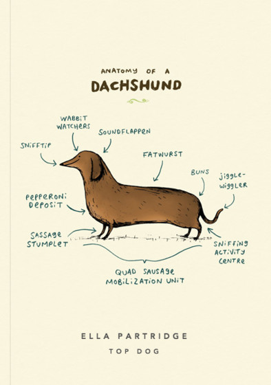 Anatomy Of A Dachshund | Personalised Lined Notebook