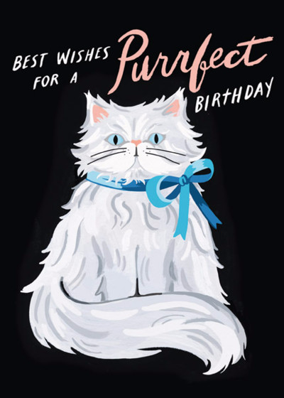Purrfect Persian Birthday | Personalised Birthday Card