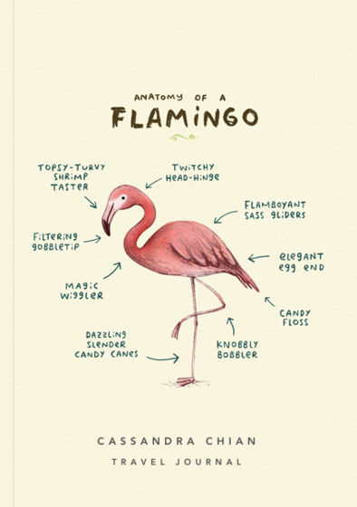 Anatomy Of A Flamingo | Personalised Lined Notebook