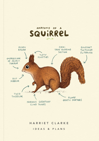 Anatomy Of A Squirrel | Personalised Lined Notebook