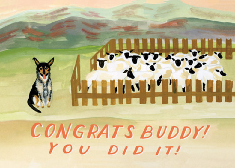 Sheepdog | Personalised Congratulations Card