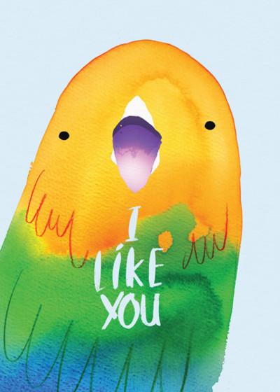 I Like You | Personalised Birthday Card
