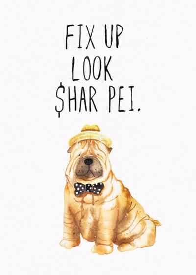 Look Shar Pei | Personalised Birthday Card