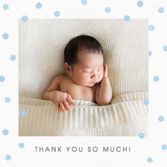 Blue Daisy Scatter | Personalised Thank You Card Set