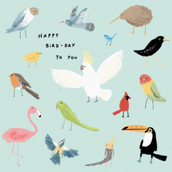 Happy Bird Day Birthday Card Papier