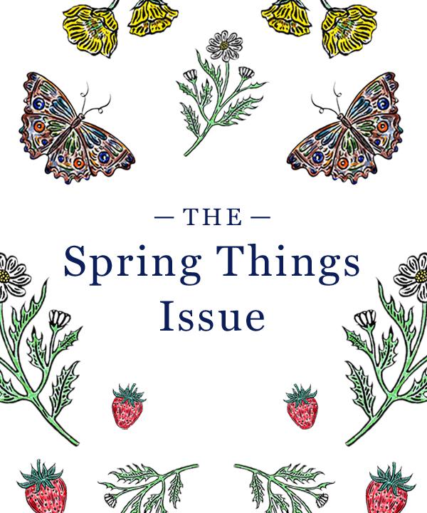 0319 thefold springthingsissuecover