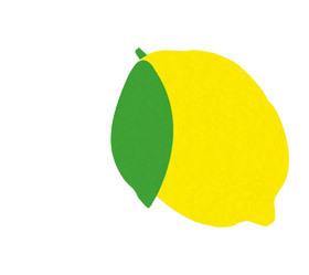 lemonleftmargin.jpg
